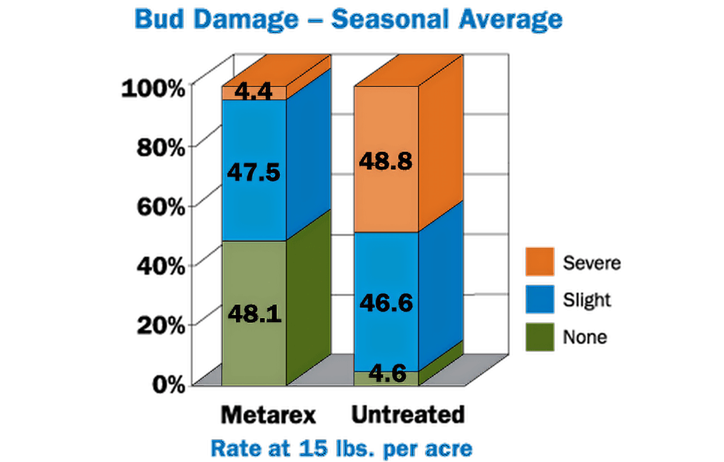 Bud Damage - Seasonal Average
