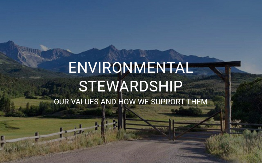 Environmental Stewardship. Our values and how we support them